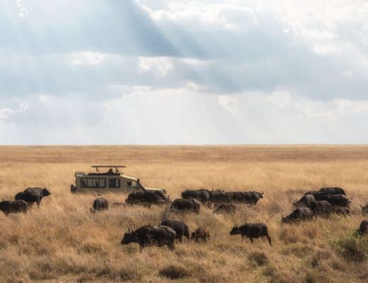 6 Incredible Places to Visit in Africa