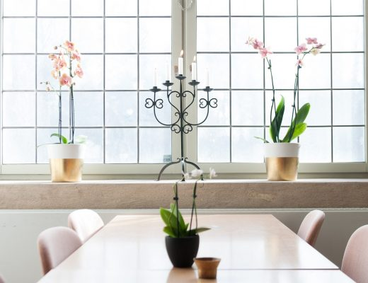 Home Design Tips with Feng Shui